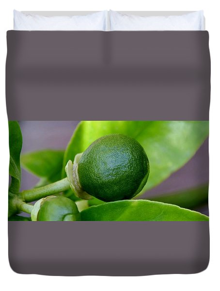 Duvet Cover featuring the photograph Gapefruit by Werner Lehmann