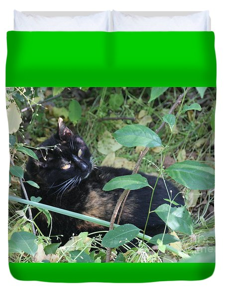 Garden Kitty 4 Duvet Cover by Wendy Coulson