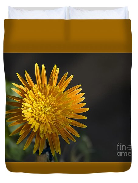 Duvet Cover featuring the photograph Gerbera In Bloom by Pravine Chester