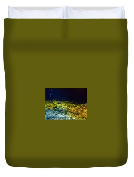 Ginnie Springs Duvet Cover