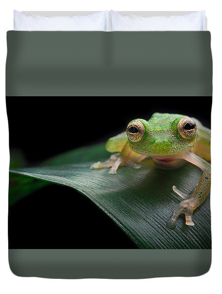 glass frog Amazon forest Duvet Cover