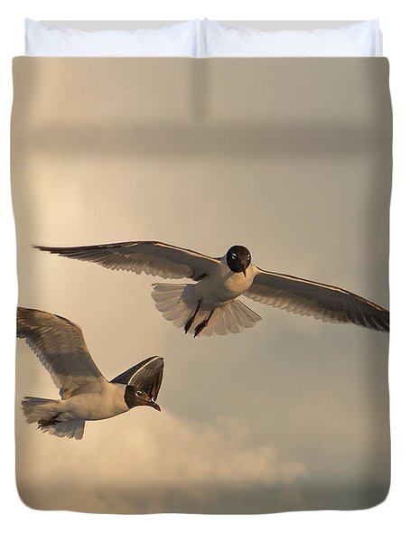 Gliders Duvet Cover