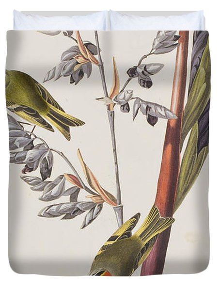 Golden-crested Wren Duvet Cover by John James Audubon