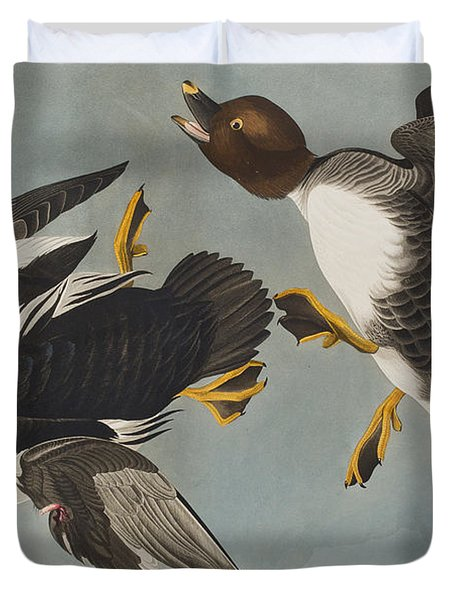 Golden-eye Duck  Duvet Cover by John James Audubon