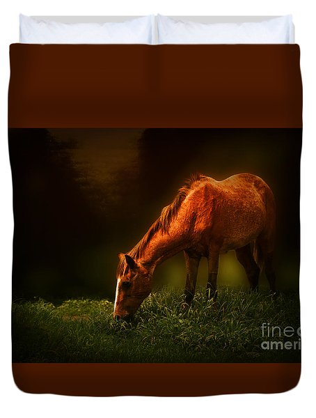 Grazing Duvet Cover by Charuhas Images