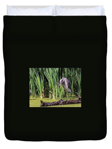 Great Blue Heron Itch Duvet Cover by Edward Peterson