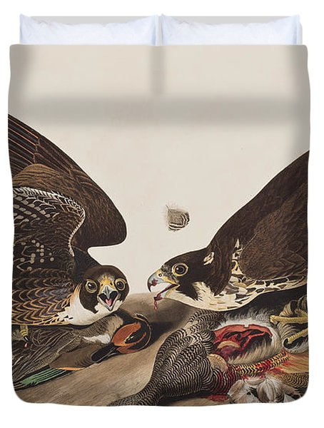 Great-footed Hawk Duvet Cover by John James Audubon