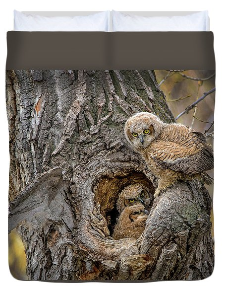 Great Horned Owlets In A Nest Duvet Cover