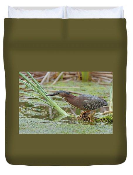 Green Heron Duvet Cover