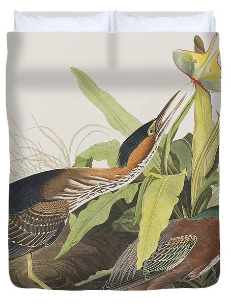 Green Heron Duvet Cover by John James Audubon