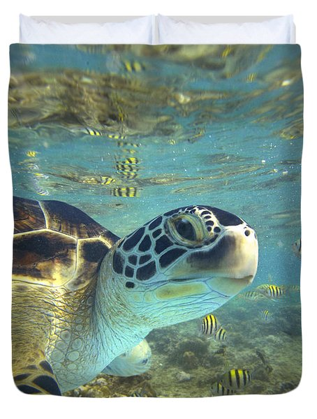 Green Sea Turtle Balicasag Island Duvet Cover