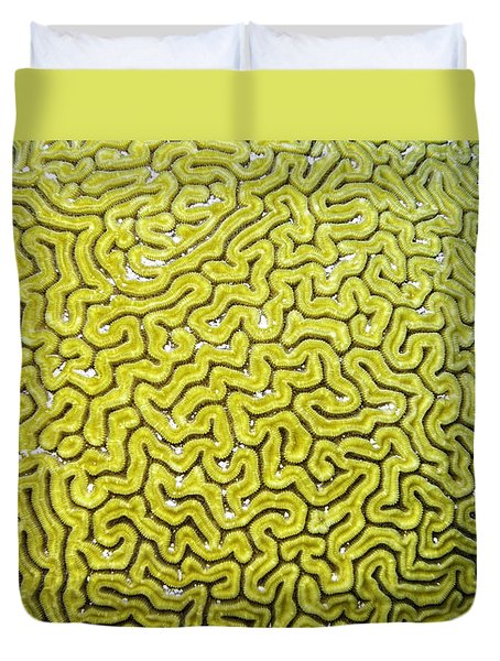 Grooved Brain Coral Duvet Cover