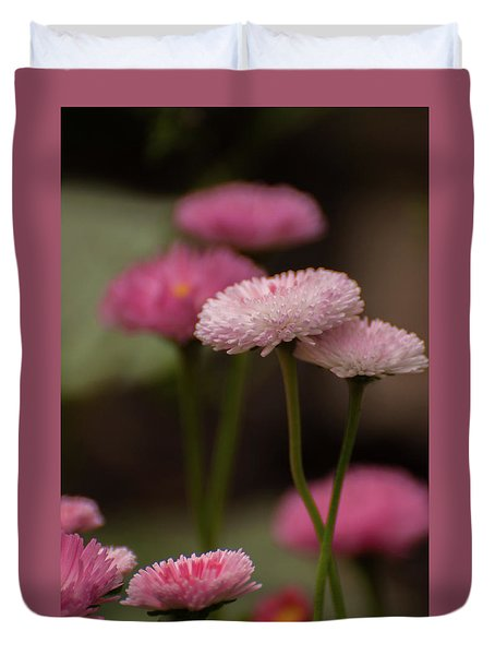 Duvet Cover featuring the photograph Habanera English Daisy by Brenda Jacobs