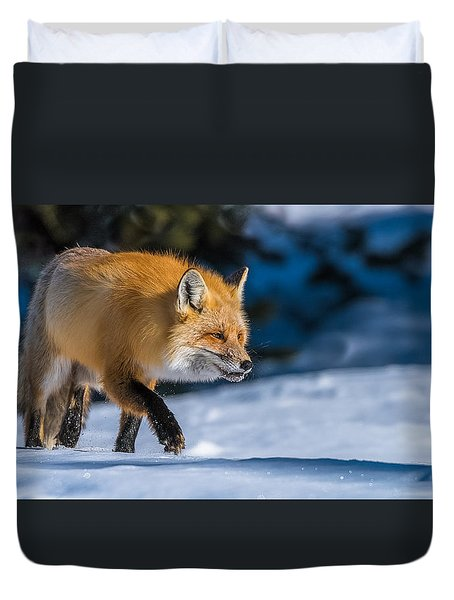 Duvet Cover featuring the photograph Handsome Mr. Fox by Yeates Photography