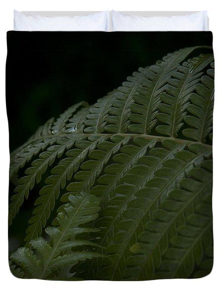 Hapuu Pulu Hawaiian Tree Fern  Duvet Cover by Sharon Mau
