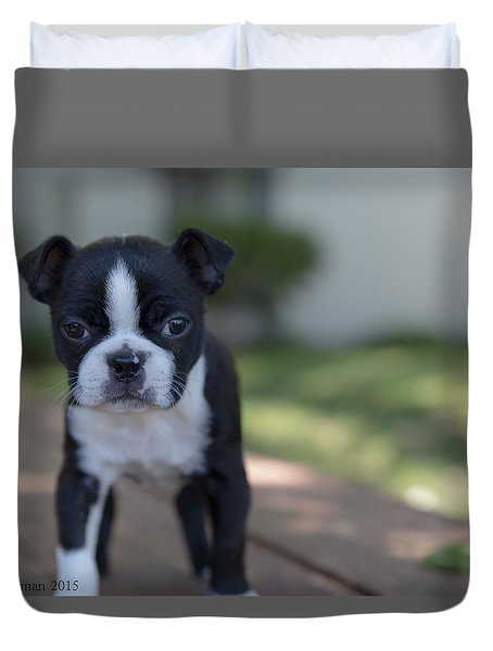 Harley As A Puppy Duvet Cover by Lora Lee Chapman