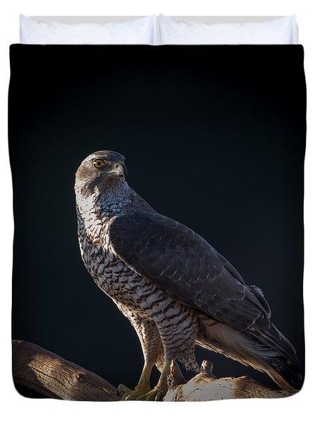 Hawk-eye Duvet Cover