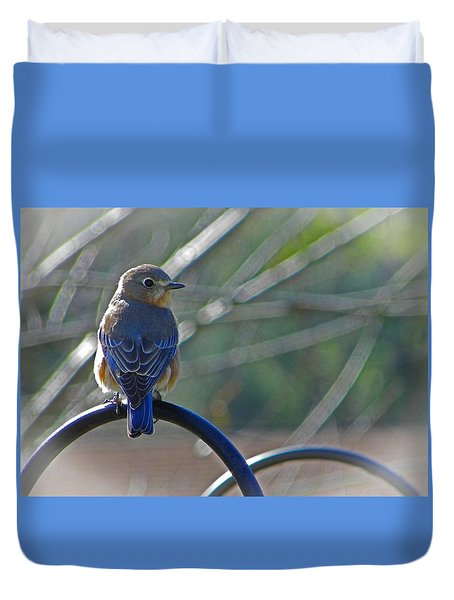 Hello Bluebird Duvet Cover