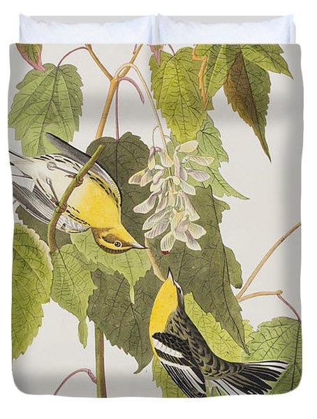 Hemlock Warbler Duvet Cover by John James Audubon