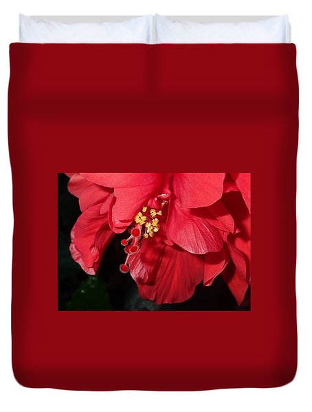 Duvet Cover featuring the photograph Hibiscus  by Farol Tomson
