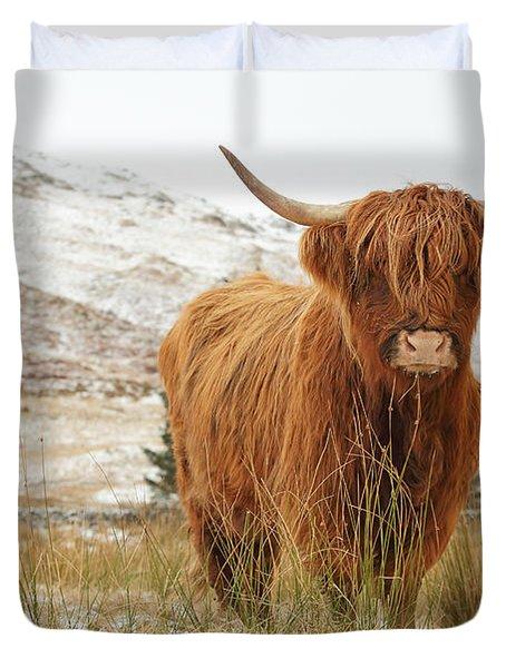 Highland Cow Duvet Cover by Grant Glendinning
