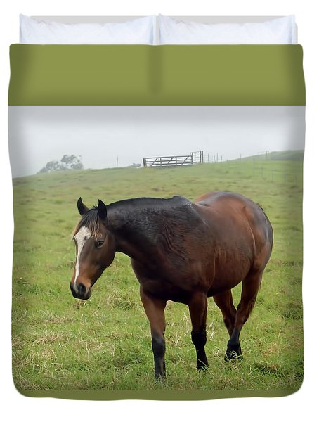 Horse In The Fog Duvet Cover by Pamela Walton