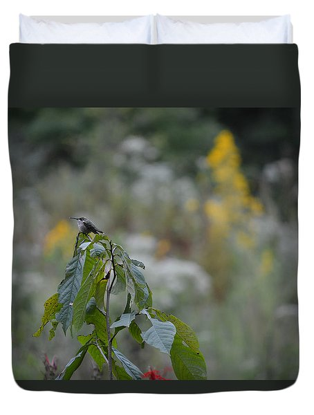 Humming Bird Duvet Cover by Linda Geiger