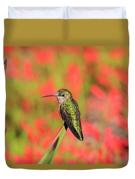 Hummingbird #5 Duvet Cover