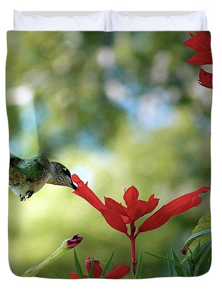 Hummingbird Delight Duvet Cover by Sue Stefanowicz