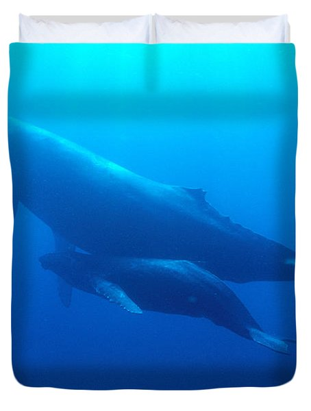 Humpback Mother And Calf Duvet Cover by Ed Robinson - Printscapes