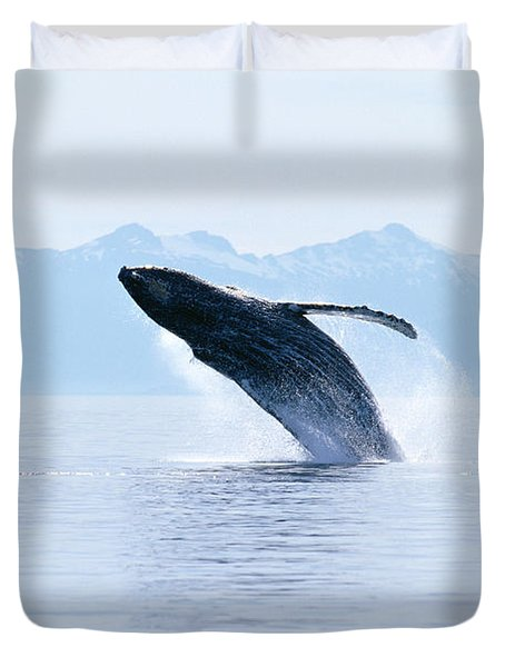 Humpback Whale Breaching Duvet Cover by John Hyde - Printscapes