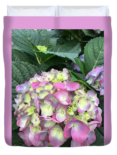 Hydrangea Duvet Cover by Kay Gilley