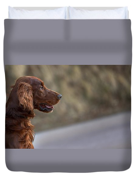 Irish Setter Duvet Cover