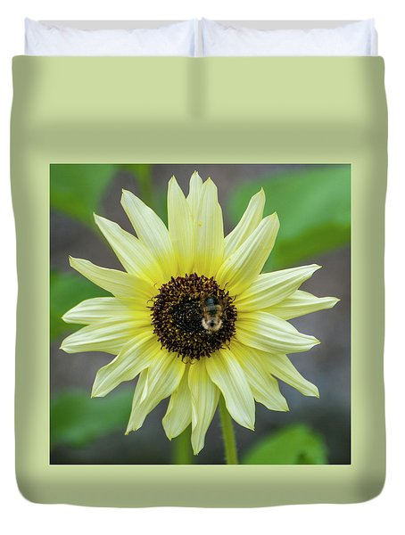 Duvet Cover featuring the photograph Italian Sunflower by Brenda Jacobs