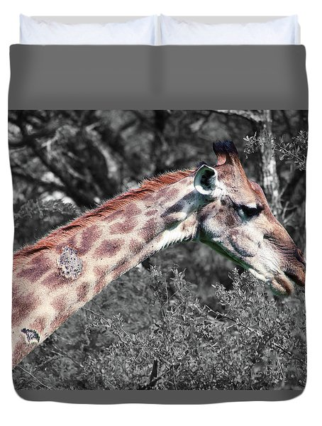 I've Got Stories To Tell Duvet Cover