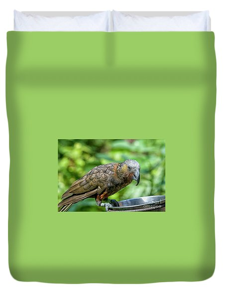 Duvet Cover featuring the photograph Kaka by Patricia Hofmeester