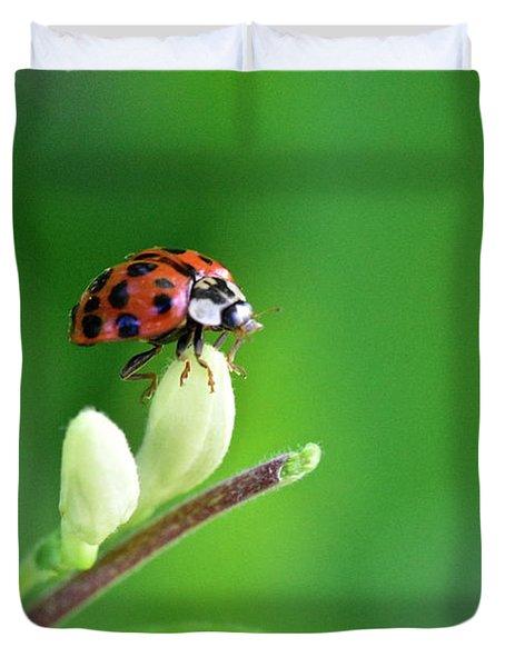 Lady Bug Duvet Cover
