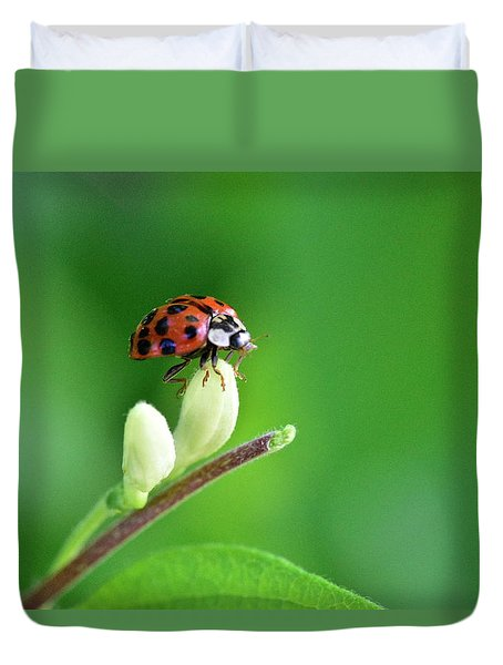 Lady Bug Duvet Cover