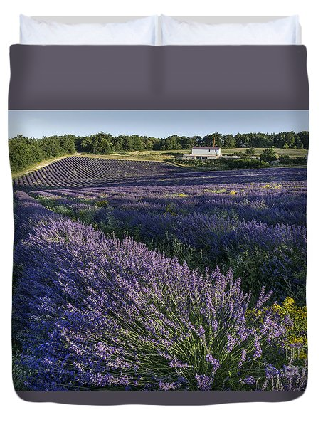 Duvet Cover featuring the photograph Lavender Field Provence  by Juergen Held