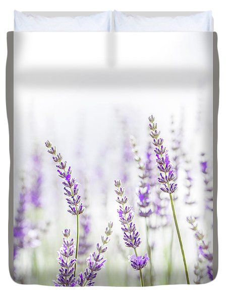Lavender Flower In The Garden,park,backyard,meadow Blossom In Th Duvet Cover