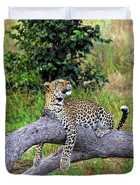 Leopard - Botswana, Africa Duvet Cover