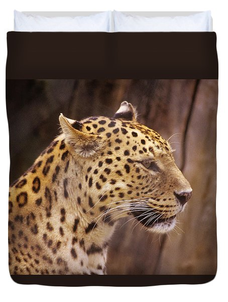 Duvet Cover featuring the photograph Leopard by Donald Paczynski
