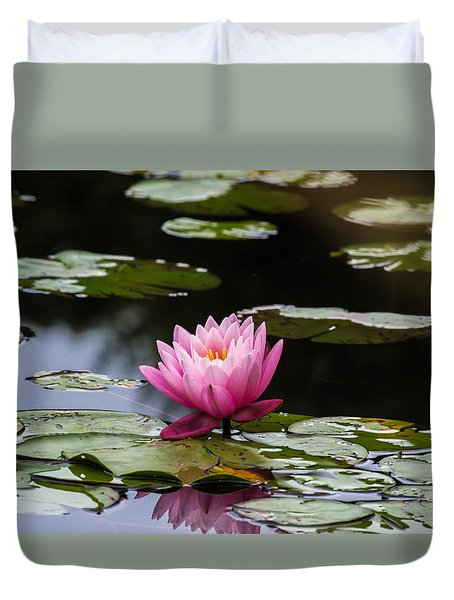 Lily Pad Flower Duvet Cover by Anthony Thomas