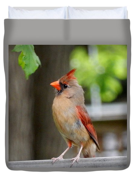 Duvet Cover featuring the photograph Listening by Betty-Anne McDonald