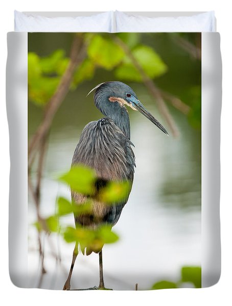 Duvet Cover featuring the photograph Little Blue Heron by Christopher Holmes
