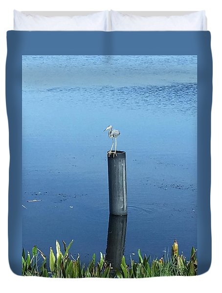 Little Blue Heron Duvet Cover by Kay Gilley