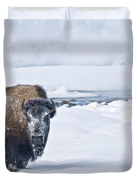 Lone Bison Duvet Cover