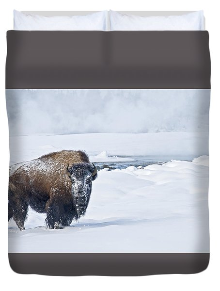 Lone Bison Duvet Cover