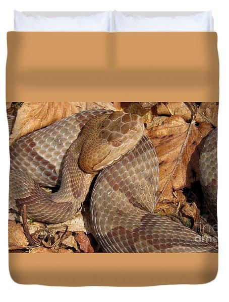 Macro Copperhead Duvet Cover