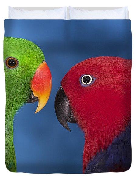 Male And Female Eclectus Parrots Duvet Cover